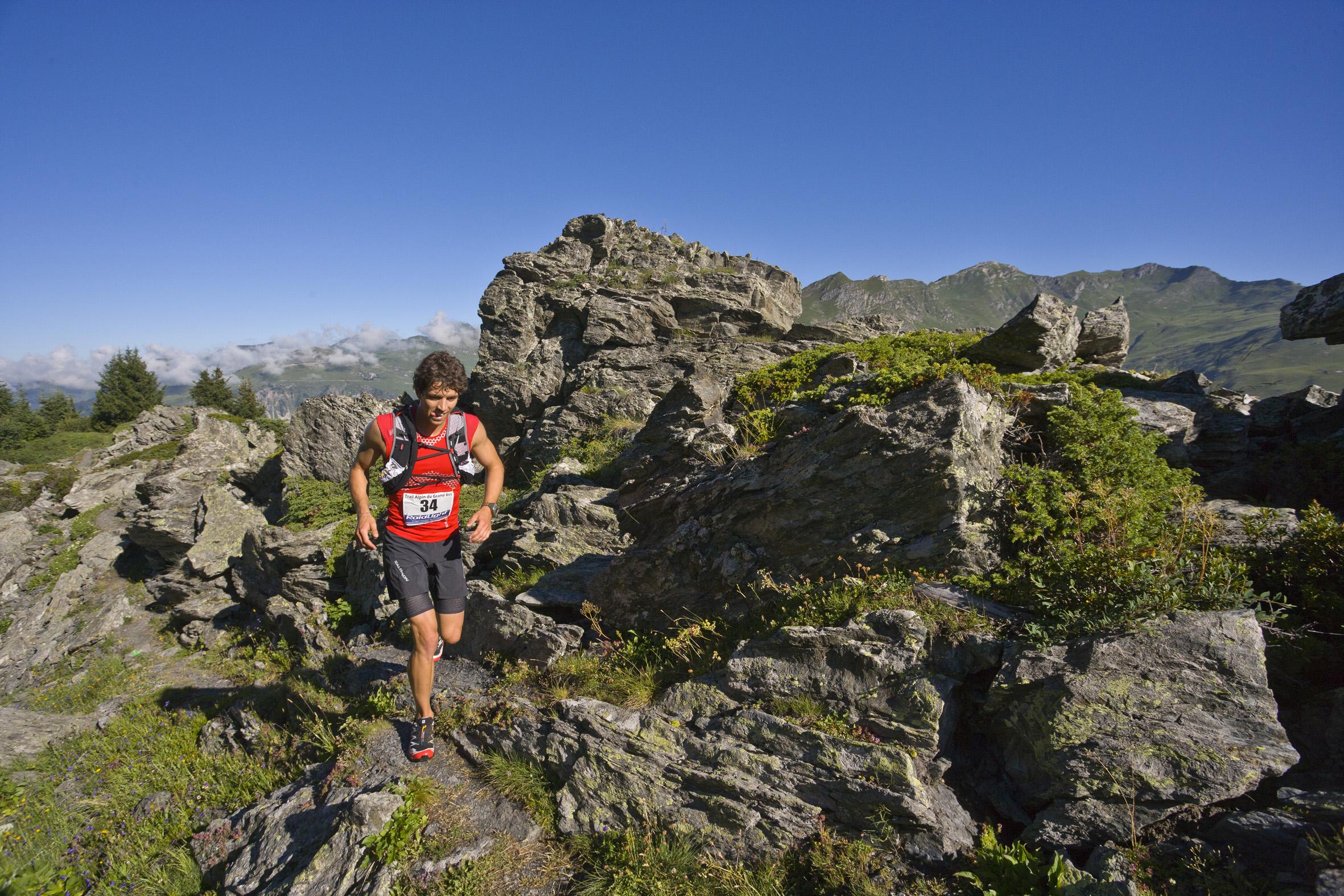 Champagny en Vanoise: Eté 2013 ( 73-Savoie) France