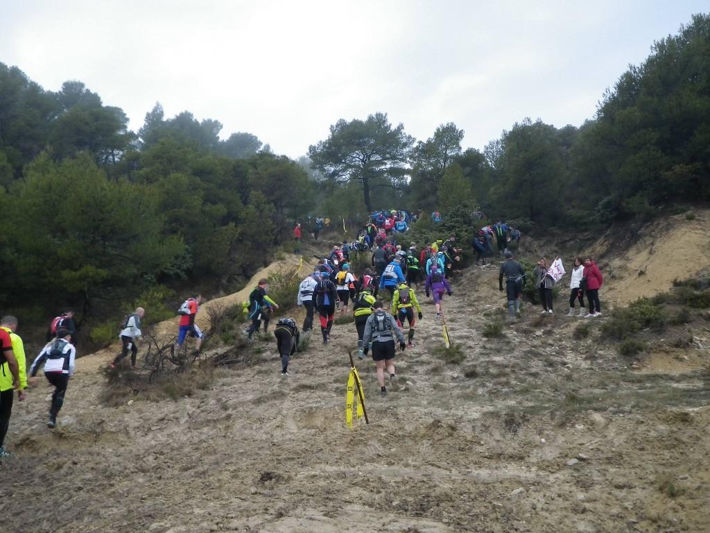 10353466 10206139086067228 6953660320383696611 o 1024x768 - Ergysport Trail du Ventoux : Céline Lafaye et Julien Rancon, vainqueurs du 44km (par Robert Goin) / 15-03-15