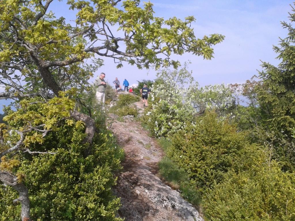 en haut de la roche du Guet, 1ère bosse au km6