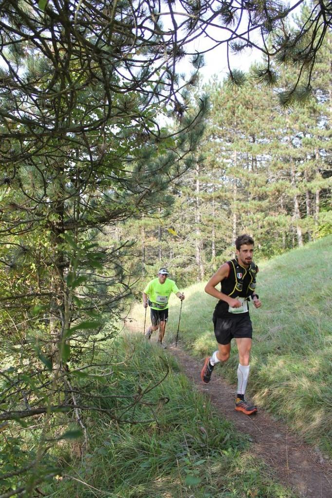 250 coureurs engagés sur le 30km