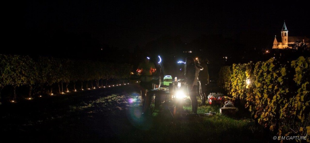 IMG 0029 1024x472 - TRAIL « LA CHAMBERIENNE » : ROBIN CATTET A EU CHAUD ! Résultats, compte rendu et photos (reportage « TPS Infos » d'Alexandre Garin) / 24-10-15