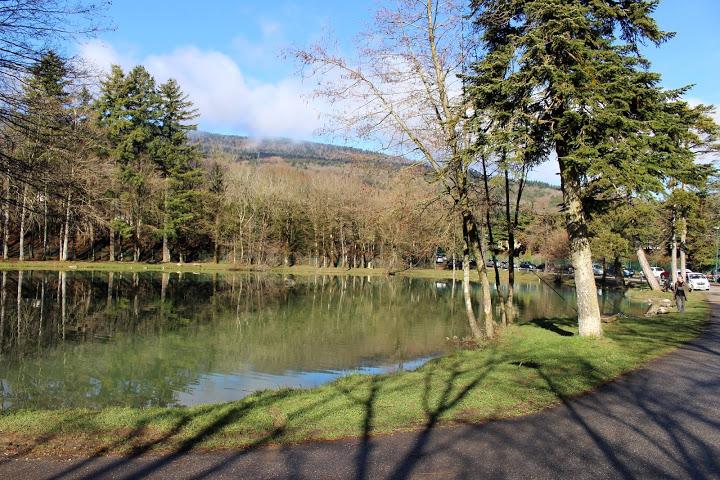 IMG 4548 - PHOTOS DU 23KM DU TRAIL DE LA MICHAILLE / 26-03-16