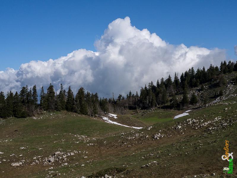 jura grand cret eau paysage nuage 1 - PRESENTATION DE LA MONTEE DU CRET D'EAU : CHALLENGES, PARCOURS, PALMARES, INFOS PRATIQUES ET PHOTOS (1ER VOLET) / 22-05-16